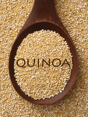 Dogs-and-Quinoa
